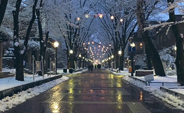 evening on Locust Walk with snow and lights